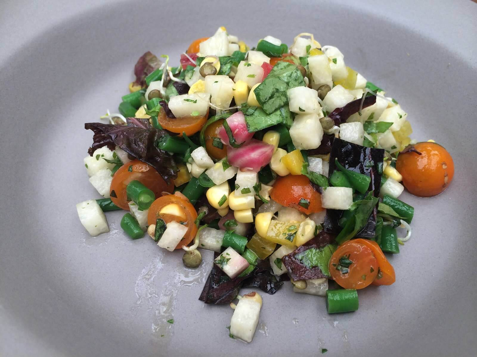 Starter--Vegetable Salad. sprouted lentils, beets, corn, haricots verts, jicama, sungold tomatoes, red wine herb vinaigrette