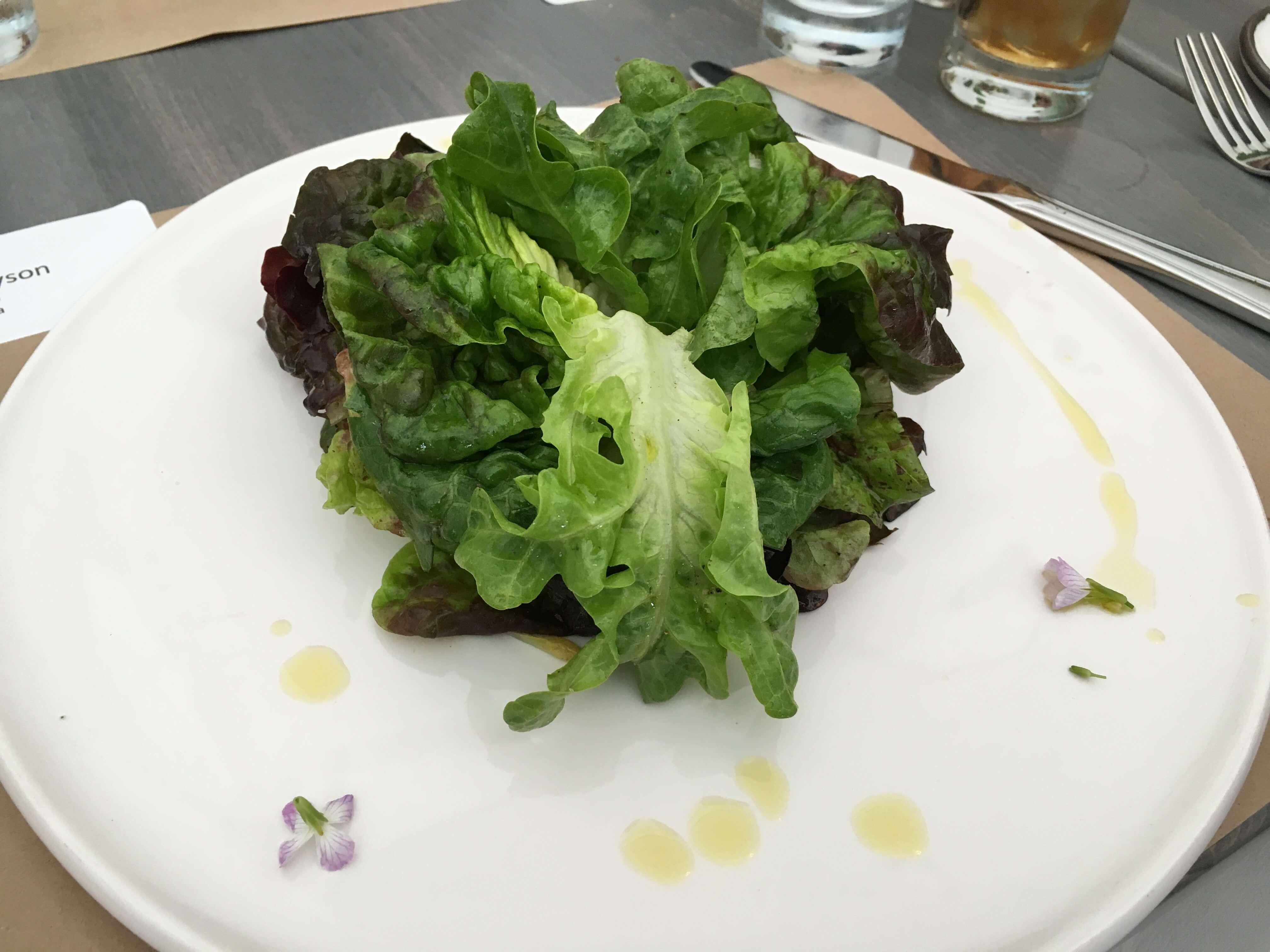 """Salade Verte. """"The garden of"""" farms market greens, preserved lemon vinaigrette."""